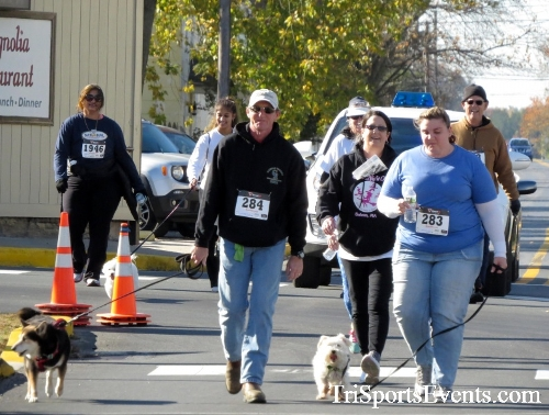 Ryan's High Five 5K Run/Walk<br><br><br><br><a href='https://www.trisportsevents.com/pics/16_Ryan's_High_Five_5K_168.JPG' download='16_Ryan's_High_Five_5K_168.JPG'>Click here to download.</a><Br><a href='http://www.facebook.com/sharer.php?u=http:%2F%2Fwww.trisportsevents.com%2Fpics%2F16_Ryan's_High_Five_5K_168.JPG&t=Ryan's High Five 5K Run/Walk' target='_blank'><img src='images/fb_share.png' width='100'></a>