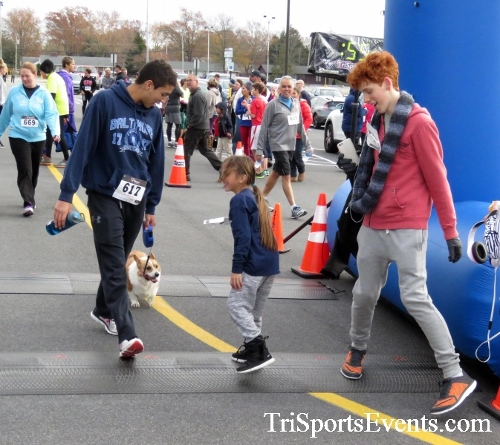Turkey Trot 5K Run/Wak<br><br><br><br><a href='http://www.trisportsevents.com/pics/16_Turkey_Trot_5K_278.JPG' download='16_Turkey_Trot_5K_278.JPG'>Click here to download.</a><Br><a href='http://www.facebook.com/sharer.php?u=http:%2F%2Fwww.trisportsevents.com%2Fpics%2F16_Turkey_Trot_5K_278.JPG&t=Turkey Trot 5K Run/Wak' target='_blank'><img src='images/fb_share.png' width='100'></a>