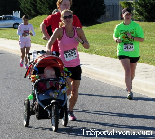 Walmart Warrior 5K Run/Walk<br><br><br><br><a href='https://www.trisportsevents.com/pics/16_Walmart_Warrior_5K_045.JPG' download='16_Walmart_Warrior_5K_045.JPG'>Click here to download.</a><Br><a href='http://www.facebook.com/sharer.php?u=http:%2F%2Fwww.trisportsevents.com%2Fpics%2F16_Walmart_Warrior_5K_045.JPG&t=Walmart Warrior 5K Run/Walk' target='_blank'><img src='images/fb_share.png' width='100'></a>