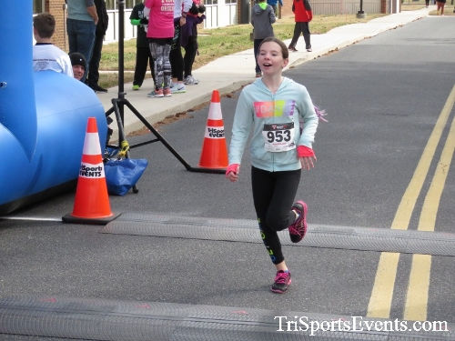 Chocolate 5K Run/Walk<br><br><br><br><a href='http://www.trisportsevents.com/pics/17_Chocolate_5K_421.JPG' download='17_Chocolate_5K_421.JPG'>Click here to download.</a><Br><a href='http://www.facebook.com/sharer.php?u=http:%2F%2Fwww.trisportsevents.com%2Fpics%2F17_Chocolate_5K_421.JPG&t=Chocolate 5K Run/Walk' target='_blank'><img src='images/fb_share.png' width='100'></a>