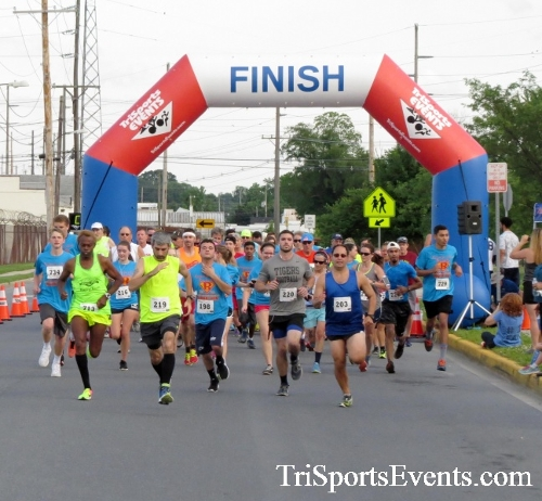 Cougars for a Cause 5K Run/Walk<br><br><br><br><a href='https://www.trisportsevents.com/pics/17_Cougars_for_a_Cause_5K_018.JPG' download='17_Cougars_for_a_Cause_5K_018.JPG'>Click here to download.</a><Br><a href='http://www.facebook.com/sharer.php?u=http:%2F%2Fwww.trisportsevents.com%2Fpics%2F17_Cougars_for_a_Cause_5K_018.JPG&t=Cougars for a Cause 5K Run/Walk' target='_blank'><img src='images/fb_share.png' width='100'></a>
