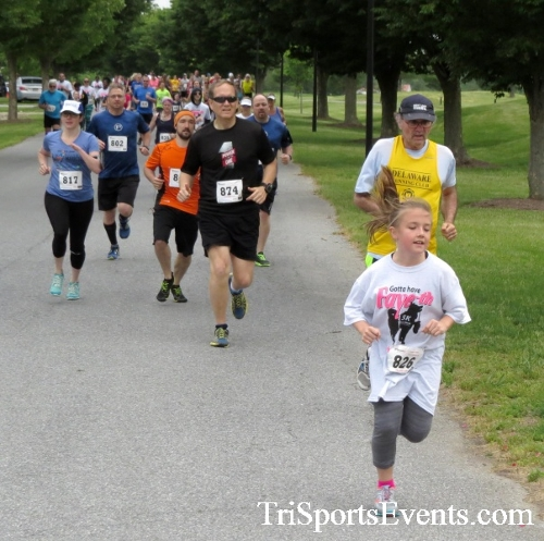 Gotta Have Faye-th 5K Run/Walk<br><br><br><br><a href='http://www.trisportsevents.com/pics/17_Gotta_Have_Faye-th_5K_017.JPG' download='17_Gotta_Have_Faye-th_5K_017.JPG'>Click here to download.</a><Br><a href='http://www.facebook.com/sharer.php?u=http:%2F%2Fwww.trisportsevents.com%2Fpics%2F17_Gotta_Have_Faye-th_5K_017.JPG&t=Gotta Have Faye-th 5K Run/Walk' target='_blank'><img src='images/fb_share.png' width='100'></a>
