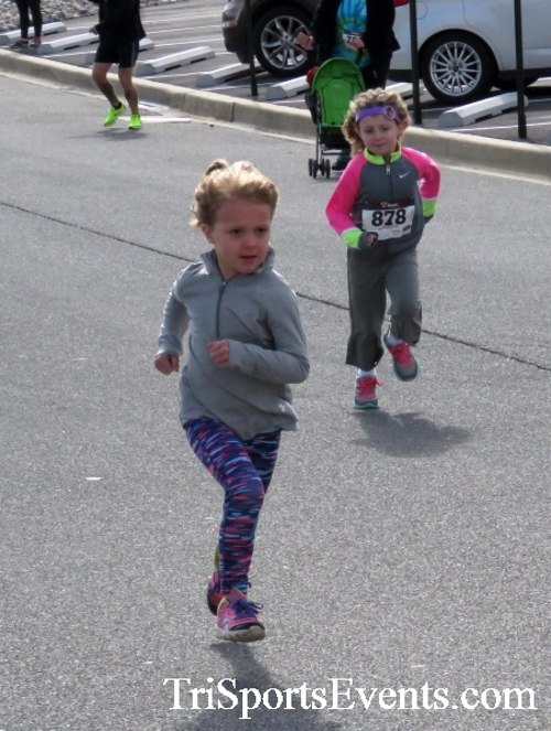 Heart & Sole 5K Run/Walk<br><br><br><br><a href='http://www.trisportsevents.com/pics/17_Heart_&_Soul_5K_008.JPG' download='17_Heart_&_Soul_5K_008.JPG'>Click here to download.</a><Br><a href='http://www.facebook.com/sharer.php?u=http:%2F%2Fwww.trisportsevents.com%2Fpics%2F17_Heart_&_Soul_5K_008.JPG&t=Heart & Sole 5K Run/Walk' target='_blank'><img src='images/fb_share.png' width='100'></a>
