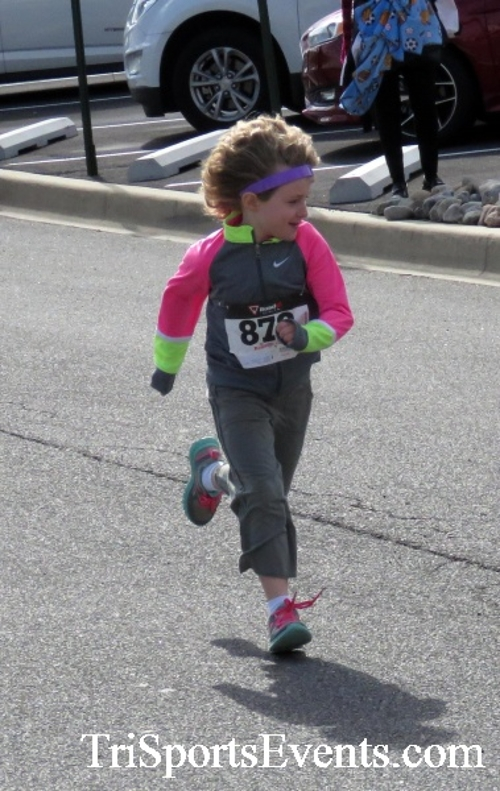 Heart & Sole 5K Run/Walk<br><br><br><br><a href='http://www.trisportsevents.com/pics/17_Heart_&_Soul_5K_009.JPG' download='17_Heart_&_Soul_5K_009.JPG'>Click here to download.</a><Br><a href='http://www.facebook.com/sharer.php?u=http:%2F%2Fwww.trisportsevents.com%2Fpics%2F17_Heart_&_Soul_5K_009.JPG&t=Heart & Sole 5K Run/Walk' target='_blank'><img src='images/fb_share.png' width='100'></a>