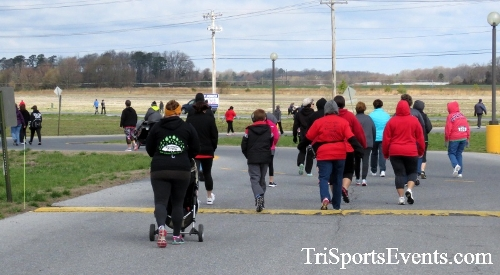Heart & Sole 5K Run/Walk<br><br><br><br><a href='http://www.trisportsevents.com/pics/17_Heart_&_Soul_5K_086.JPG' download='17_Heart_&_Soul_5K_086.JPG'>Click here to download.</a><Br><a href='http://www.facebook.com/sharer.php?u=http:%2F%2Fwww.trisportsevents.com%2Fpics%2F17_Heart_&_Soul_5K_086.JPG&t=Heart & Sole 5K Run/Walk' target='_blank'><img src='images/fb_share.png' width='100'></a>