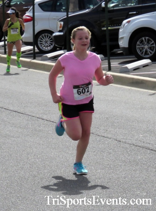 Heart & Sole 5K Run/Walk<br><br><br><br><a href='http://www.trisportsevents.com/pics/17_Heart_&_Soul_5K_135.JPG' download='17_Heart_&_Soul_5K_135.JPG'>Click here to download.</a><Br><a href='http://www.facebook.com/sharer.php?u=http:%2F%2Fwww.trisportsevents.com%2Fpics%2F17_Heart_&_Soul_5K_135.JPG&t=Heart & Sole 5K Run/Walk' target='_blank'><img src='images/fb_share.png' width='100'></a>