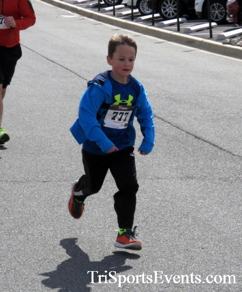 Heart & Sole 5K Run/Walk<br><br><br><br><a href='http://www.trisportsevents.com/pics/17_Heart_&_Soul_5K_148.JPG' download='17_Heart_&_Soul_5K_148.JPG'>Click here to download.</a><Br><a href='http://www.facebook.com/sharer.php?u=http:%2F%2Fwww.trisportsevents.com%2Fpics%2F17_Heart_&_Soul_5K_148.JPG&t=Heart & Sole 5K Run/Walk' target='_blank'><img src='images/fb_share.png' width='100'></a>
