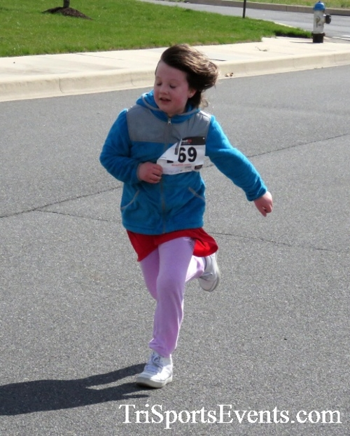 Heart & Sole 5K Run/Walk<br><br><br><br><a href='http://www.trisportsevents.com/pics/17_Heart_&_Soul_5K_152.JPG' download='17_Heart_&_Soul_5K_152.JPG'>Click here to download.</a><Br><a href='http://www.facebook.com/sharer.php?u=http:%2F%2Fwww.trisportsevents.com%2Fpics%2F17_Heart_&_Soul_5K_152.JPG&t=Heart & Sole 5K Run/Walk' target='_blank'><img src='images/fb_share.png' width='100'></a>