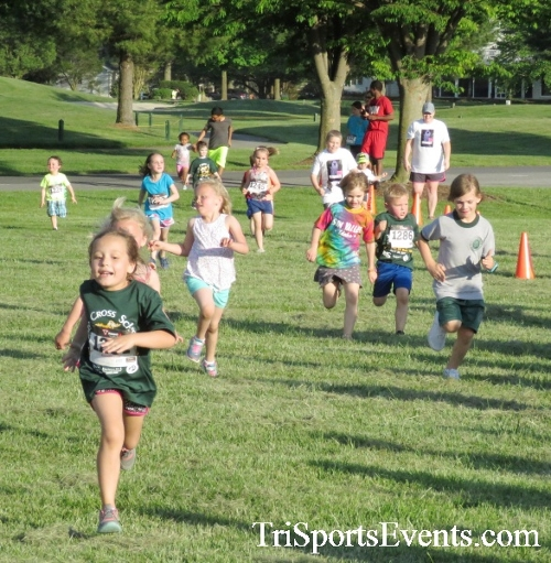 Holy Cross School's Family Fun 5K Run & Walk<br><br><br><br><a href='https://www.trisportsevents.com/pics/17_Holy_Cross_5K_003.JPG' download='17_Holy_Cross_5K_003.JPG'>Click here to download.</a><Br><a href='http://www.facebook.com/sharer.php?u=http:%2F%2Fwww.trisportsevents.com%2Fpics%2F17_Holy_Cross_5K_003.JPG&t=Holy Cross School's Family Fun 5K Run & Walk' target='_blank'><img src='images/fb_share.png' width='100'></a>