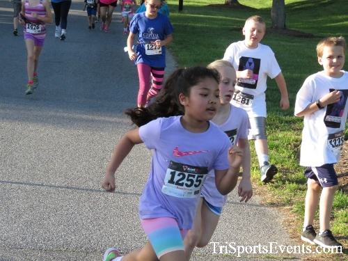 Holy Cross School's Family Fun 5K Run & Walk<br><br><br><br><a href='https://www.trisportsevents.com/pics/17_Holy_Cross_5K_026.JPG' download='17_Holy_Cross_5K_026.JPG'>Click here to download.</a><Br><a href='http://www.facebook.com/sharer.php?u=http:%2F%2Fwww.trisportsevents.com%2Fpics%2F17_Holy_Cross_5K_026.JPG&t=Holy Cross School's Family Fun 5K Run & Walk' target='_blank'><img src='images/fb_share.png' width='100'></a>