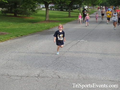 Run for Success 5K Run/Walk<br><br><br><br><a href='https://www.trisportsevents.com/pics/17_Run_for_Success_5K_030.JPG' download='17_Run_for_Success_5K_030.JPG'>Click here to download.</a><Br><a href='http://www.facebook.com/sharer.php?u=http:%2F%2Fwww.trisportsevents.com%2Fpics%2F17_Run_for_Success_5K_030.JPG&t=Run for Success 5K Run/Walk' target='_blank'><img src='images/fb_share.png' width='100'></a>