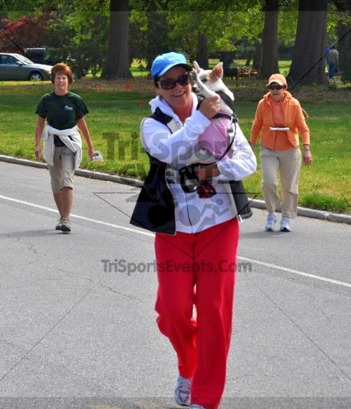 Heart & Sole 5K Run/Walk<br><br><br><br><a href='http://www.trisportsevents.com/pics/2011_Heart_&_Sole_5K_089.JPG' download='2011_Heart_&_Sole_5K_089.JPG'>Click here to download.</a><Br><a href='http://www.facebook.com/sharer.php?u=http:%2F%2Fwww.trisportsevents.com%2Fpics%2F2011_Heart_&_Sole_5K_089.JPG&t=Heart & Sole 5K Run/Walk' target='_blank'><img src='images/fb_share.png' width='100'></a>