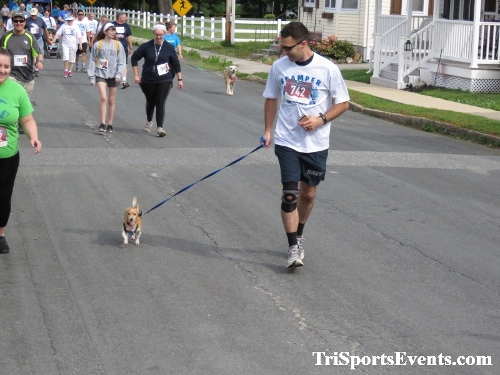 Scamper for Paws & Claws 5K Run/Walk<br><br><br><br><a href='https://www.trisportsevents.com/pics/IMG_0031_84267823.JPG' download='IMG_0031_84267823.JPG'>Click here to download.</a><Br><a href='http://www.facebook.com/sharer.php?u=http:%2F%2Fwww.trisportsevents.com%2Fpics%2FIMG_0031_84267823.JPG&t=Scamper for Paws & Claws 5K Run/Walk' target='_blank'><img src='images/fb_share.png' width='100'></a>