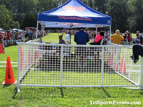 62nd Lake Forest Cross Country Festival<br><br><br><br><a href='https://www.trisportsevents.com/pics/IMG_0032_76675333.JPG' download='IMG_0032_76675333.JPG'>Click here to download.</a><Br><a href='http://www.facebook.com/sharer.php?u=http:%2F%2Fwww.trisportsevents.com%2Fpics%2FIMG_0032_76675333.JPG&t=62nd Lake Forest Cross Country Festival' target='_blank'><img src='images/fb_share.png' width='100'></a>