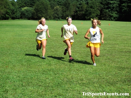 62nd Lake Forest Cross Country Festival<br><br><br><br><a href='http://www.trisportsevents.com/pics/IMG_0038_911961.JPG' download='IMG_0038_911961.JPG'>Click here to download.</a><Br><a href='http://www.facebook.com/sharer.php?u=http:%2F%2Fwww.trisportsevents.com%2Fpics%2FIMG_0038_911961.JPG&t=62nd Lake Forest Cross Country Festival' target='_blank'><img src='images/fb_share.png' width='100'></a>