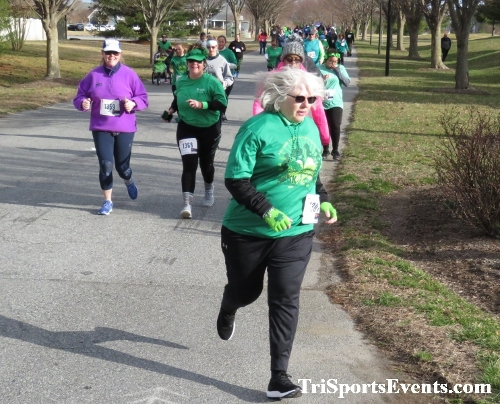 Shamrock Scramble 5K Run/Walk<br><br><br><br><a href='https://www.trisportsevents.com/pics/IMG_0042_92621744.JPG' download='IMG_0042_92621744.JPG'>Click here to download.</a><Br><a href='http://www.facebook.com/sharer.php?u=http:%2F%2Fwww.trisportsevents.com%2Fpics%2FIMG_0042_92621744.JPG&t=Shamrock Scramble 5K Run/Walk' target='_blank'><img src='images/fb_share.png' width='100'></a>