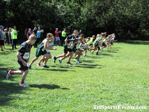 62nd Lake Forest Cross Country Festival<br><br><br><br><a href='https://www.trisportsevents.com/pics/IMG_0062_64182151.JPG' download='IMG_0062_64182151.JPG'>Click here to download.</a><Br><a href='http://www.facebook.com/sharer.php?u=http:%2F%2Fwww.trisportsevents.com%2Fpics%2FIMG_0062_64182151.JPG&t=62nd Lake Forest Cross Country Festival' target='_blank'><img src='images/fb_share.png' width='100'></a>