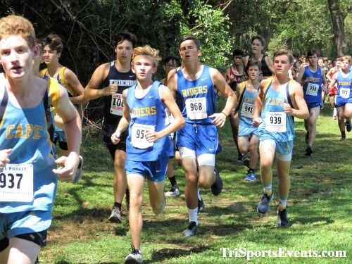 62nd Lake Forest Cross Country Festival<br><br><br><br><a href='https://www.trisportsevents.com/pics/IMG_0129_32864343.JPG' download='IMG_0129_32864343.JPG'>Click here to download.</a><Br><a href='http://www.facebook.com/sharer.php?u=http:%2F%2Fwww.trisportsevents.com%2Fpics%2FIMG_0129_32864343.JPG&t=62nd Lake Forest Cross Country Festival' target='_blank'><img src='images/fb_share.png' width='100'></a>