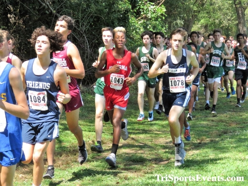 62nd Lake Forest Cross Country Festival<br><br><br><br><a href='https://www.trisportsevents.com/pics/IMG_0132_90138177.JPG' download='IMG_0132_90138177.JPG'>Click here to download.</a><Br><a href='http://www.facebook.com/sharer.php?u=http:%2F%2Fwww.trisportsevents.com%2Fpics%2FIMG_0132_90138177.JPG&t=62nd Lake Forest Cross Country Festival' target='_blank'><img src='images/fb_share.png' width='100'></a>