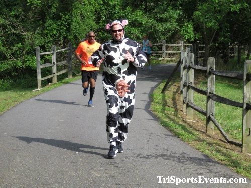 Milk Run 5K Run/Walk<br><br><br><br><a href='https://www.trisportsevents.com/pics/IMG_0180_14596484.JPG' download='IMG_0180_14596484.JPG'>Click here to download.</a><Br><a href='http://www.facebook.com/sharer.php?u=http:%2F%2Fwww.trisportsevents.com%2Fpics%2FIMG_0180_14596484.JPG&t=Milk Run 5K Run/Walk' target='_blank'><img src='images/fb_share.png' width='100'></a>