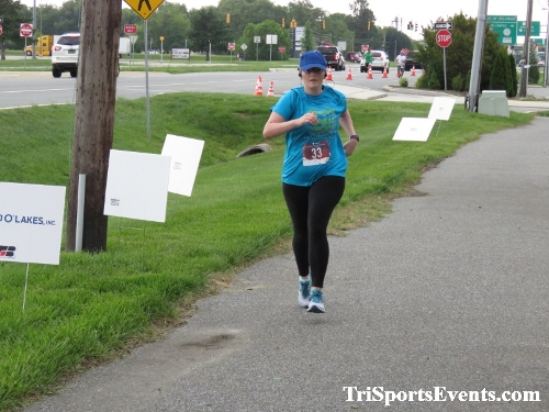 Milk Run 5K Run/Walk<br><br><br><br><a href='http://www.trisportsevents.com/pics/IMG_0256_30721408.JPG' download='IMG_0256_30721408.JPG'>Click here to download.</a><Br><a href='http://www.facebook.com/sharer.php?u=http:%2F%2Fwww.trisportsevents.com%2Fpics%2FIMG_0256_30721408.JPG&t=Milk Run 5K Run/Walk' target='_blank'><img src='images/fb_share.png' width='100'></a>
