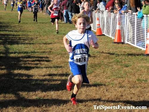DAAD Middle School XC Invitational<br><br><br><br><a href='https://www.trisportsevents.com/pics/IMG_0336_24014865.JPG' download='IMG_0336_24014865.JPG'>Click here to download.</a><Br><a href='http://www.facebook.com/sharer.php?u=http:%2F%2Fwww.trisportsevents.com%2Fpics%2FIMG_0336_24014865.JPG&t=DAAD Middle School XC Invitational' target='_blank'><img src='images/fb_share.png' width='100'></a>