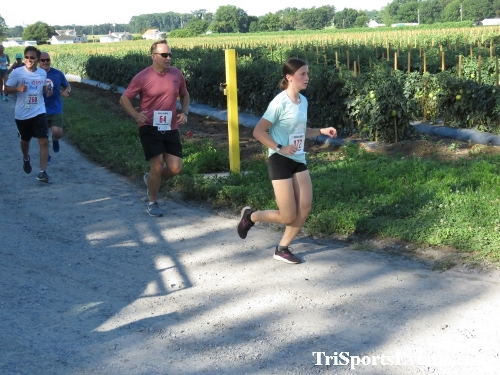 41st Great Wyoming Buffalo Stampede 5K/10K<br><br><br><br><a href='https://www.trisportsevents.com/pics/IMG_0337_6987247.JPG' download='IMG_0337_6987247.JPG'>Click here to download.</a><Br><a href='http://www.facebook.com/sharer.php?u=http:%2F%2Fwww.trisportsevents.com%2Fpics%2FIMG_0337_6987247.JPG&t=41st Great Wyoming Buffalo Stampede 5K/10K' target='_blank'><img src='images/fb_share.png' width='100'></a>