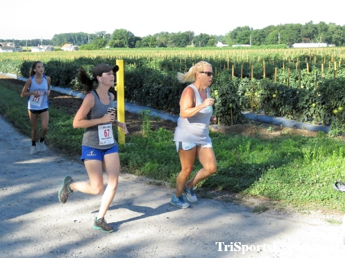 41st Great Wyoming Buffalo Stampede 5K/10K<br><br><br><br><a href='https://www.trisportsevents.com/pics/IMG_0344_84503346.JPG' download='IMG_0344_84503346.JPG'>Click here to download.</a><Br><a href='http://www.facebook.com/sharer.php?u=http:%2F%2Fwww.trisportsevents.com%2Fpics%2FIMG_0344_84503346.JPG&t=41st Great Wyoming Buffalo Stampede 5K/10K' target='_blank'><img src='images/fb_share.png' width='100'></a>