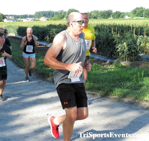 41st Great Wyoming Buffalo Stampede 5K/10K<br><br><br><br><a href='https://www.trisportsevents.com/pics/IMG_0346_34199247.JPG' download='IMG_0346_34199247.JPG'>Click here to download.</a><Br><a href='http://www.facebook.com/sharer.php?u=http:%2F%2Fwww.trisportsevents.com%2Fpics%2FIMG_0346_34199247.JPG&t=41st Great Wyoming Buffalo Stampede 5K/10K' target='_blank'><img src='images/fb_share.png' width='100'></a>