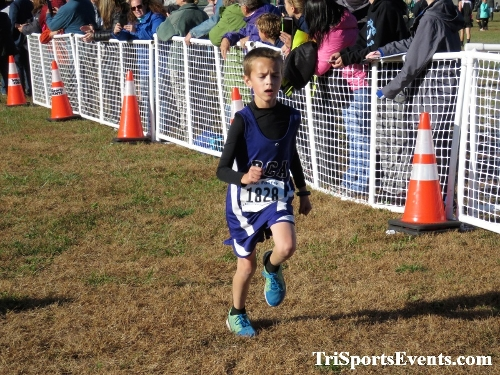 DAAD Middle School XC Invitational<br><br><br><br><a href='https://www.trisportsevents.com/pics/IMG_0365_74560592.JPG' download='IMG_0365_74560592.JPG'>Click here to download.</a><Br><a href='http://www.facebook.com/sharer.php?u=http:%2F%2Fwww.trisportsevents.com%2Fpics%2FIMG_0365_74560592.JPG&t=DAAD Middle School XC Invitational' target='_blank'><img src='images/fb_share.png' width='100'></a>