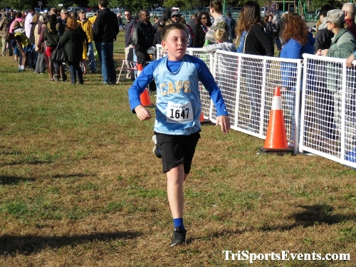 DAAD Middle School XC Invitational<br><br><br><br><a href='http://www.trisportsevents.com/pics/IMG_0374_65002746.JPG' download='IMG_0374_65002746.JPG'>Click here to download.</a><Br><a href='http://www.facebook.com/sharer.php?u=http:%2F%2Fwww.trisportsevents.com%2Fpics%2FIMG_0374_65002746.JPG&t=DAAD Middle School XC Invitational' target='_blank'><img src='images/fb_share.png' width='100'></a>