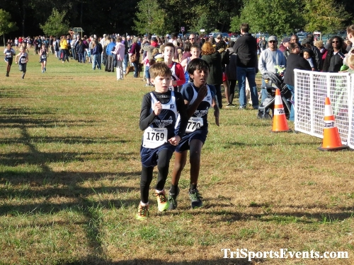 DAAD Middle School XC Invitational<br><br><br><br><a href='https://www.trisportsevents.com/pics/IMG_0377_10722699.JPG' download='IMG_0377_10722699.JPG'>Click here to download.</a><Br><a href='http://www.facebook.com/sharer.php?u=http:%2F%2Fwww.trisportsevents.com%2Fpics%2FIMG_0377_10722699.JPG&t=DAAD Middle School XC Invitational' target='_blank'><img src='images/fb_share.png' width='100'></a>