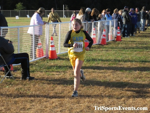 DAAD Middle School XC Invitational<br><br><br><br><a href='http://www.trisportsevents.com/pics/IMG_0438_45351876.JPG' download='IMG_0438_45351876.JPG'>Click here to download.</a><Br><a href='http://www.facebook.com/sharer.php?u=http:%2F%2Fwww.trisportsevents.com%2Fpics%2FIMG_0438_45351876.JPG&t=DAAD Middle School XC Invitational' target='_blank'><img src='images/fb_share.png' width='100'></a>