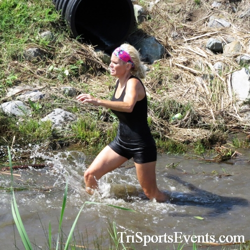 Mad Bull Mud Run<br><br><br><br><a href='http://www.trisportsevents.com/pics/IMG_3450.JPG' download='IMG_3450.JPG'>Click here to download.</a><Br><a href='http://www.facebook.com/sharer.php?u=http:%2F%2Fwww.trisportsevents.com%2Fpics%2FIMG_3450.JPG&t=Mad Bull Mud Run' target='_blank'><img src='images/fb_share.png' width='100'></a>