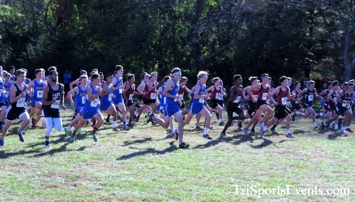 Kent County Cross Country Championships<br><br>2017 Kent County High School Cross Country Championships<p><br><br><a href='https://www.trisportsevents.com/pics/IMG_4963.JPG' download='IMG_4963.JPG'>Click here to download.</a><Br><a href='http://www.facebook.com/sharer.php?u=http:%2F%2Fwww.trisportsevents.com%2Fpics%2FIMG_4963.JPG&t=Kent County Cross Country Championships' target='_blank'><img src='images/fb_share.png' width='100'></a>