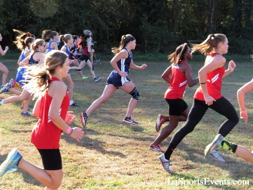 Kent County Cross Country Championships<br><br>2017 Kent County High School Cross Country Championships<p><br><br><a href='https://www.trisportsevents.com/pics/IMG_5116.JPG' download='IMG_5116.JPG'>Click here to download.</a><Br><a href='http://www.facebook.com/sharer.php?u=http:%2F%2Fwww.trisportsevents.com%2Fpics%2FIMG_5116.JPG&t=Kent County Cross Country Championships' target='_blank'><img src='images/fb_share.png' width='100'></a>