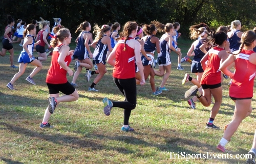 Kent County Cross Country Championships<br><br>2017 Kent County High School Cross Country Championships<p><br><br><a href='https://www.trisportsevents.com/pics/IMG_5117.JPG' download='IMG_5117.JPG'>Click here to download.</a><Br><a href='http://www.facebook.com/sharer.php?u=http:%2F%2Fwww.trisportsevents.com%2Fpics%2FIMG_5117.JPG&t=Kent County Cross Country Championships' target='_blank'><img src='images/fb_share.png' width='100'></a>