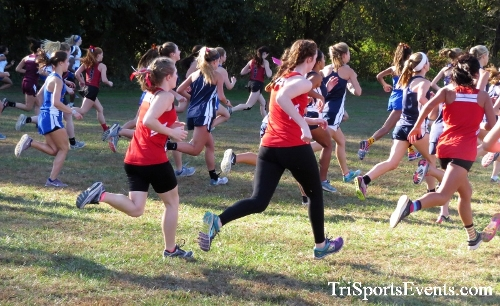 Kent County Cross Country Championships<br><br>2017 Kent County High School Cross Country Championships<p><br><br><a href='https://www.trisportsevents.com/pics/IMG_5118.JPG' download='IMG_5118.JPG'>Click here to download.</a><Br><a href='http://www.facebook.com/sharer.php?u=http:%2F%2Fwww.trisportsevents.com%2Fpics%2FIMG_5118.JPG&t=Kent County Cross Country Championships' target='_blank'><img src='images/fb_share.png' width='100'></a>