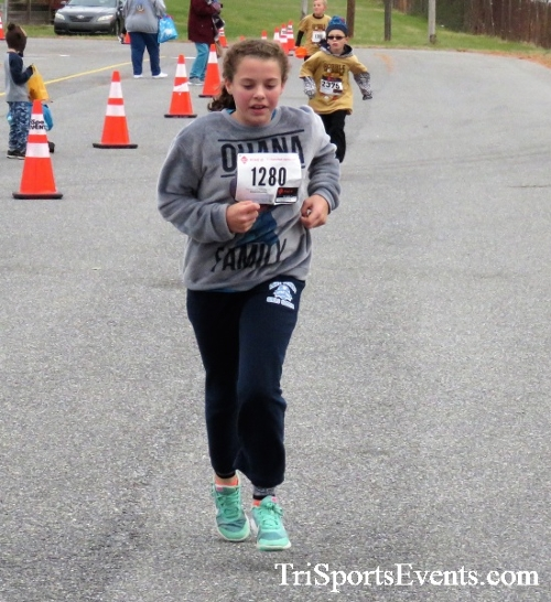 Gobble Wobble 5K Run/Walk<br><br>2017 Gobble Wobble 5K<p><br><br><a href='http://www.trisportsevents.com/pics/IMG_5515.JPG' download='IMG_5515.JPG'>Click here to download.</a><Br><a href='http://www.facebook.com/sharer.php?u=http:%2F%2Fwww.trisportsevents.com%2Fpics%2FIMG_5515.JPG&t=Gobble Wobble 5K Run/Walk' target='_blank'><img src='images/fb_share.png' width='100'></a>