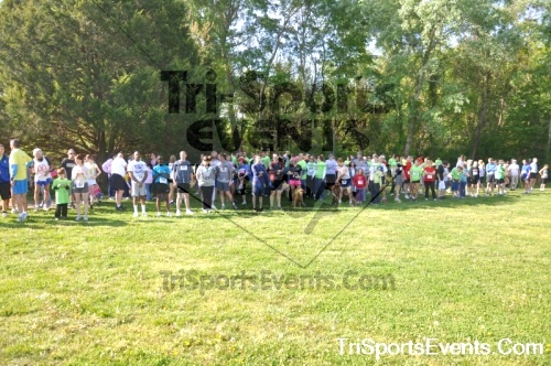 Kent County SPCA Scamper for Paws & Claws - In Memory of Peder Hansen<br><br><br><br><a href='http://www.trisportsevents.com/pics/pic0014.JPG' download='pic0014.JPG'>Click here to download.</a><Br><a href='http://www.facebook.com/sharer.php?u=http:%2F%2Fwww.trisportsevents.com%2Fpics%2Fpic0014.JPG&t=Kent County SPCA Scamper for Paws & Claws - In Memory of Peder Hansen' target='_blank'><img src='images/fb_share.png' width='100'></a>