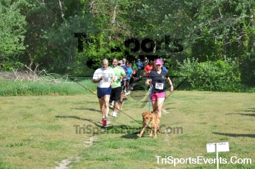 Kent County SPCA Scamper for Paws & Claws - In Memory of Peder Hansen<br><br><br><br><a href='https://www.trisportsevents.com/pics/pic0115.JPG' download='pic0115.JPG'>Click here to download.</a><Br><a href='http://www.facebook.com/sharer.php?u=http:%2F%2Fwww.trisportsevents.com%2Fpics%2Fpic0115.JPG&t=Kent County SPCA Scamper for Paws & Claws - In Memory of Peder Hansen' target='_blank'><img src='images/fb_share.png' width='100'></a>