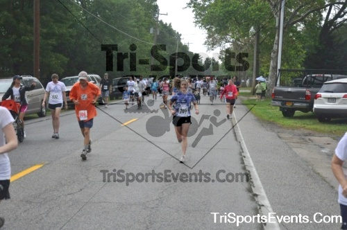 34th Chestertown Tea Party 10 Mile Run<br><br><br><br><a href='https://www.trisportsevents.com/pics/pic0339.JPG' download='pic0339.JPG'>Click here to download.</a><Br><a href='http://www.facebook.com/sharer.php?u=http:%2F%2Fwww.trisportsevents.com%2Fpics%2Fpic0339.JPG&t=34th Chestertown Tea Party 10 Mile Run' target='_blank'><img src='images/fb_share.png' width='100'></a>