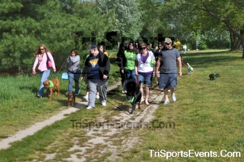 Kent County SPCA Scamper for Paws & Claws - In Memory of Peder Hansen<br><br><br><br><a href='https://www.trisportsevents.com/pics/pic0402.JPG' download='pic0402.JPG'>Click here to download.</a><Br><a href='http://www.facebook.com/sharer.php?u=http:%2F%2Fwww.trisportsevents.com%2Fpics%2Fpic0402.JPG&t=Kent County SPCA Scamper for Paws & Claws - In Memory of Peder Hansen' target='_blank'><img src='images/fb_share.png' width='100'></a>