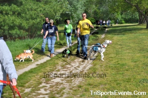 Kent County SPCA Scamper for Paws & Claws - In Memory of Peder Hansen<br><br><br><br><a href='http://www.trisportsevents.com/pics/pic0424.JPG' download='pic0424.JPG'>Click here to download.</a><Br><a href='http://www.facebook.com/sharer.php?u=http:%2F%2Fwww.trisportsevents.com%2Fpics%2Fpic0424.JPG&t=Kent County SPCA Scamper for Paws & Claws - In Memory of Peder Hansen' target='_blank'><img src='images/fb_share.png' width='100'></a>