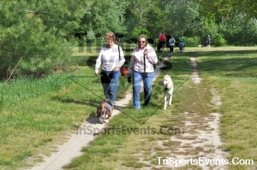 Kent County SPCA Scamper for Paws & Claws - In Memory of Peder Hansen<br><br><br><br><a href='http://www.trisportsevents.com/pics/pic0442.JPG' download='pic0442.JPG'>Click here to download.</a><Br><a href='http://www.facebook.com/sharer.php?u=http:%2F%2Fwww.trisportsevents.com%2Fpics%2Fpic0442.JPG&t=Kent County SPCA Scamper for Paws & Claws - In Memory of Peder Hansen' target='_blank'><img src='images/fb_share.png' width='100'></a>