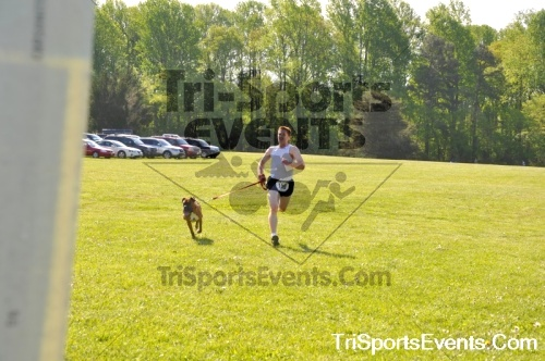 Kent County SPCA Scamper for Paws & Claws - In Memory of Peder Hansen<br><br><br><br><a href='https://www.trisportsevents.com/pics/pic0482.JPG' download='pic0482.JPG'>Click here to download.</a><Br><a href='http://www.facebook.com/sharer.php?u=http:%2F%2Fwww.trisportsevents.com%2Fpics%2Fpic0482.JPG&t=Kent County SPCA Scamper for Paws & Claws - In Memory of Peder Hansen' target='_blank'><img src='images/fb_share.png' width='100'></a>
