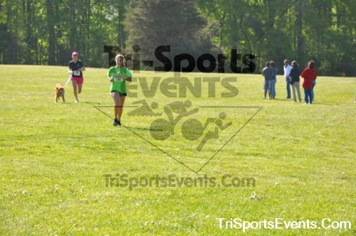 Kent County SPCA Scamper for Paws & Claws - In Memory of Peder Hansen<br><br><br><br><a href='https://www.trisportsevents.com/pics/pic0601.JPG' download='pic0601.JPG'>Click here to download.</a><Br><a href='http://www.facebook.com/sharer.php?u=http:%2F%2Fwww.trisportsevents.com%2Fpics%2Fpic0601.JPG&t=Kent County SPCA Scamper for Paws & Claws - In Memory of Peder Hansen' target='_blank'><img src='images/fb_share.png' width='100'></a>