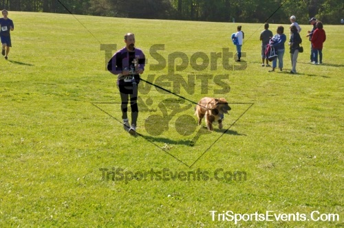 Kent County SPCA Scamper for Paws & Claws - In Memory of Peder Hansen<br><br><br><br><a href='https://www.trisportsevents.com/pics/pic0631.JPG' download='pic0631.JPG'>Click here to download.</a><Br><a href='http://www.facebook.com/sharer.php?u=http:%2F%2Fwww.trisportsevents.com%2Fpics%2Fpic0631.JPG&t=Kent County SPCA Scamper for Paws & Claws - In Memory of Peder Hansen' target='_blank'><img src='images/fb_share.png' width='100'></a>